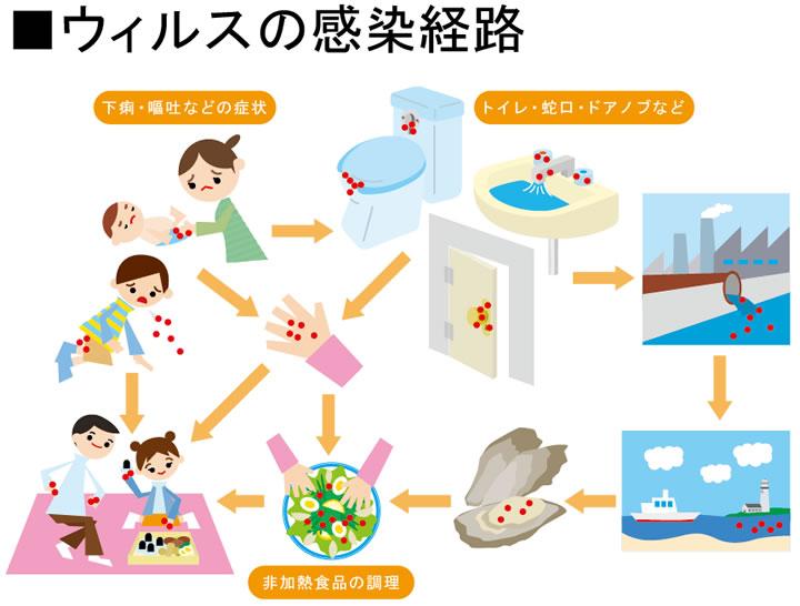 まずはていねいな手洗いで予防を。 後片づけも慎重に