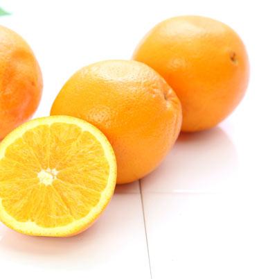 オレンジ画像.jpg