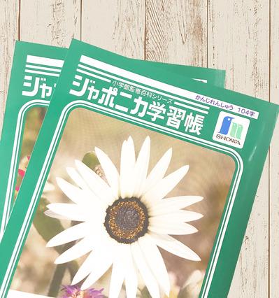 IMG_0234のコピー.jpg