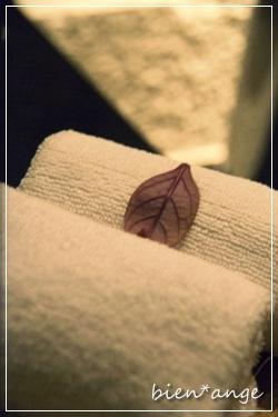 batha0027_001884-20120319aroma.jpg